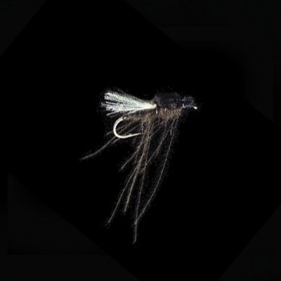 Dry fly Petitjean...