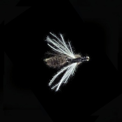 Fly Petitjean TWO-WINGED...