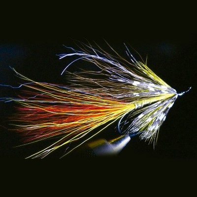FLY FISHING SALMON DUSTY...