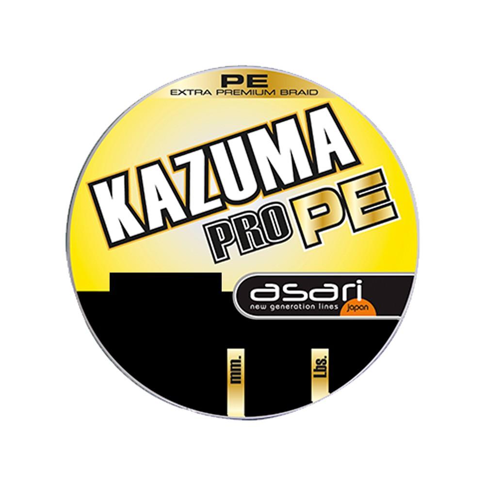 B/300m ASARI KAZUMA PRO PE 0,22mm