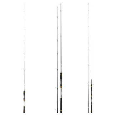 ROD DAIWA BLACK GOLD 1002 HXHFS