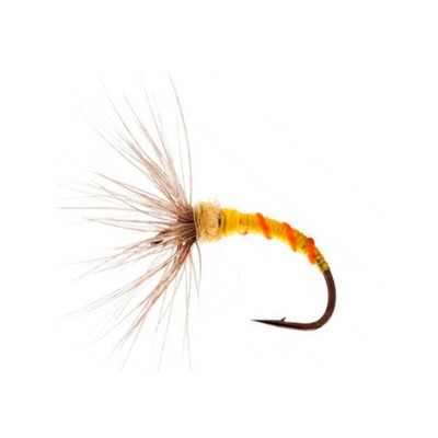 SAKASA KEBARI FLIES