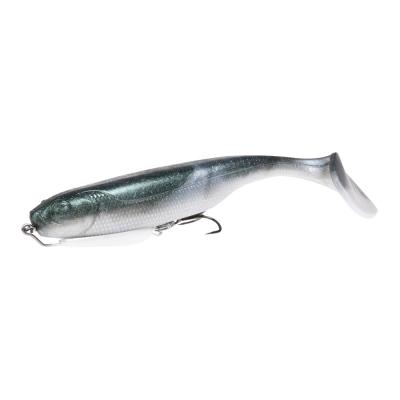 Fish hart Remora